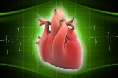 liv heart