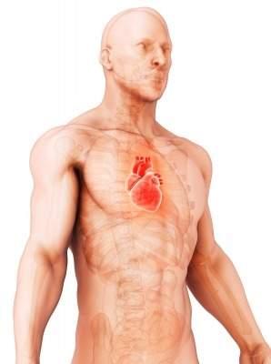CardioFocus
