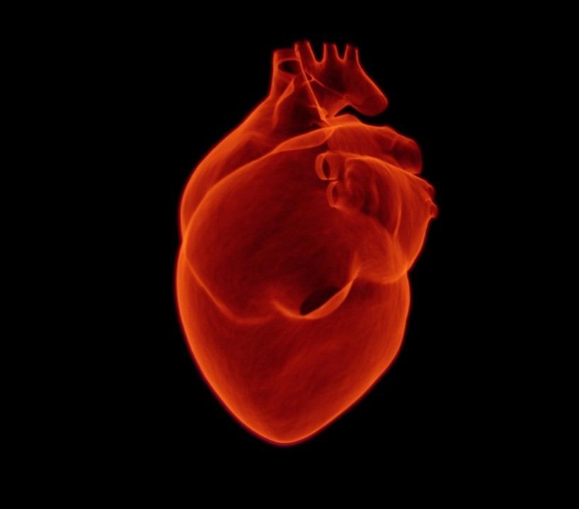 heart-1767552_1280