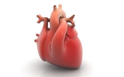 heart3G