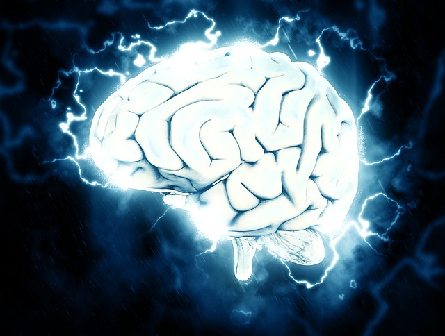 Brainaethlon