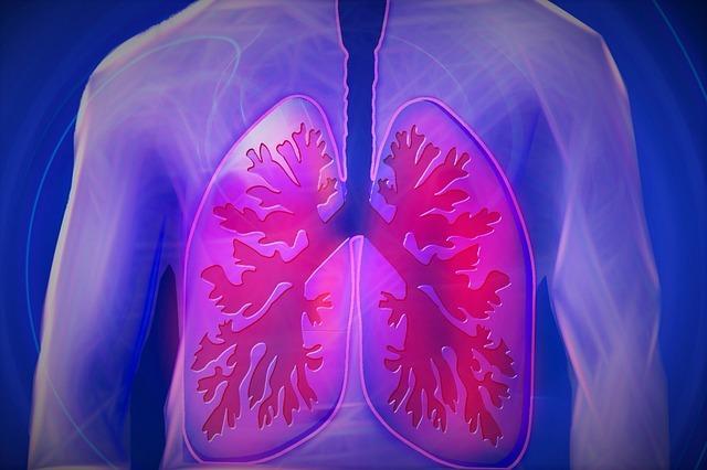 Lungmachine