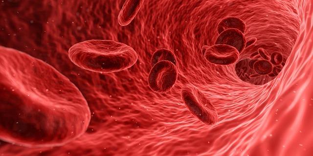 bloodplat