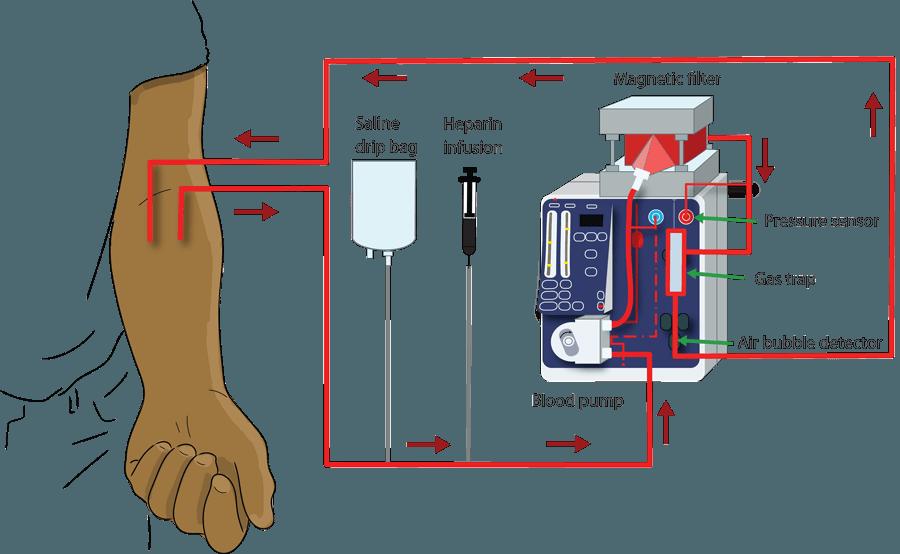 medisieve blood-borne diseases