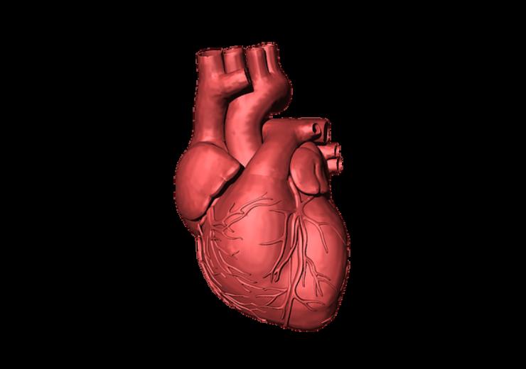 hearthuman