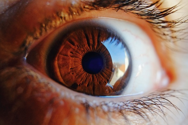 ADM Tronics agrees to develop RTI's patented RetinalGeniX system for early diagnosis of Diabetes. (Credit: Pixabay/Juraj Varga)