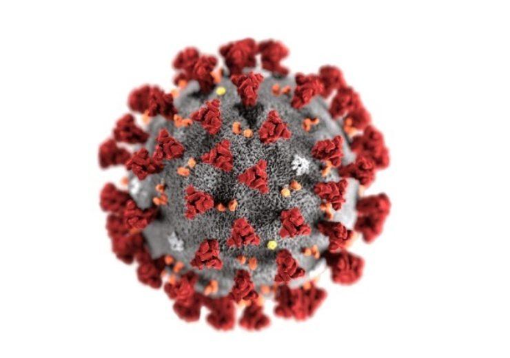 Corovirus