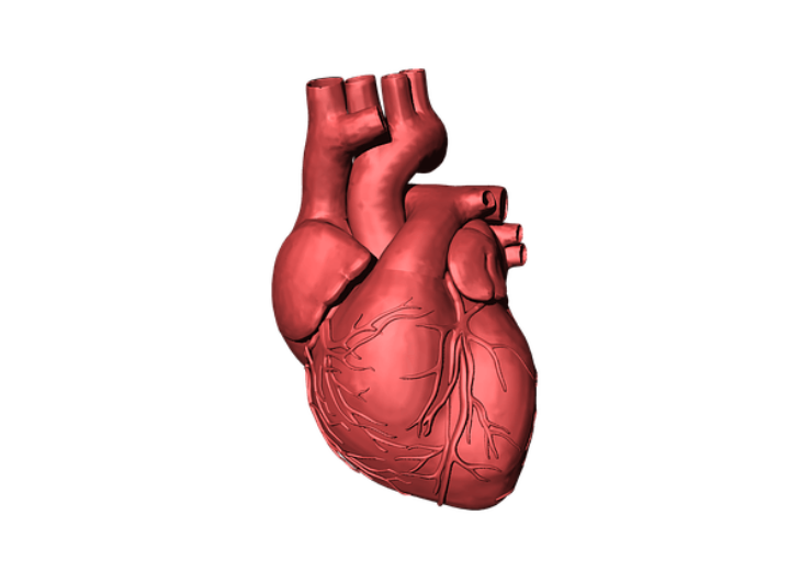 Heartfailuer