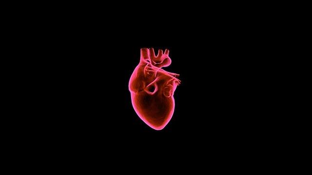 heart-1767352_640