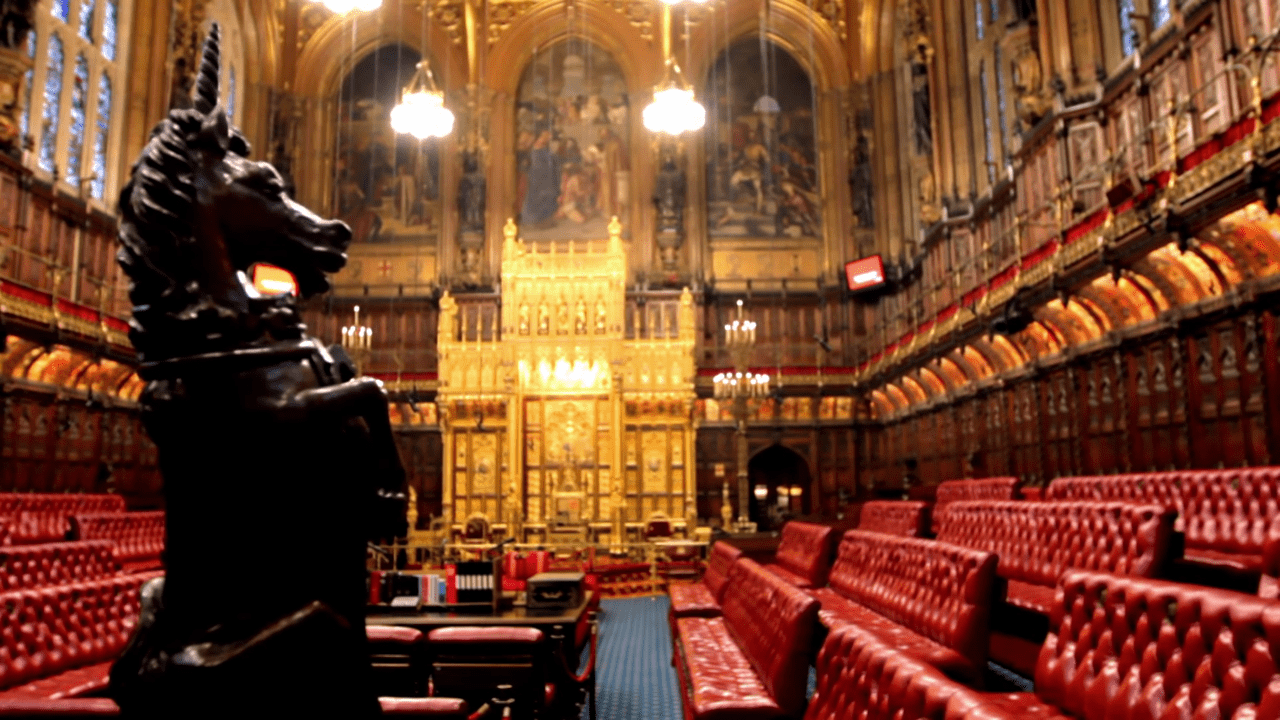 medicines and medical devices bill house of lords
