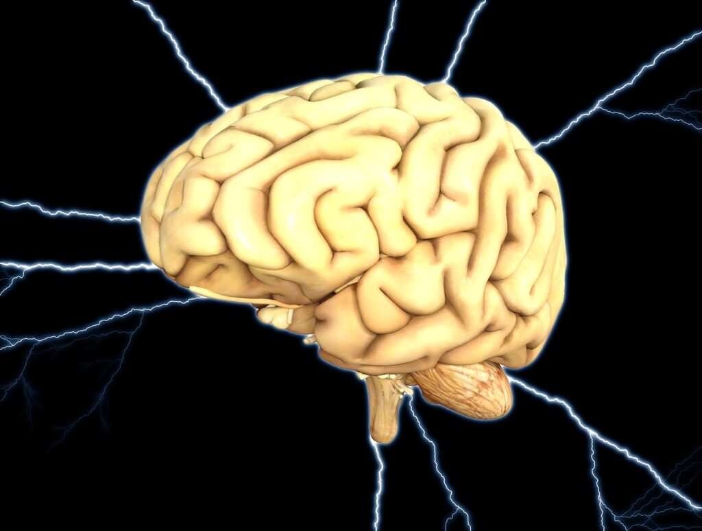 New device could fill 'urgent need' for rapid traumatic brain injury detection
