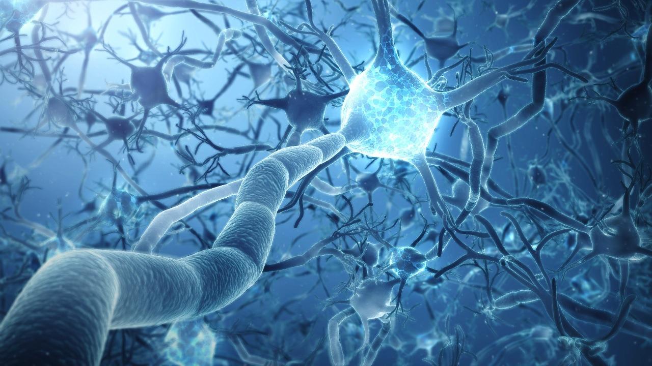 neural implant technology