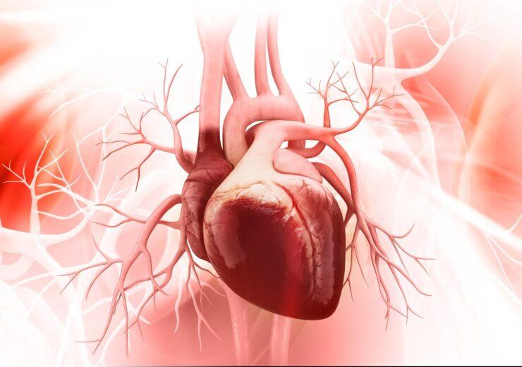 Anatomy,Of,Human,Heart