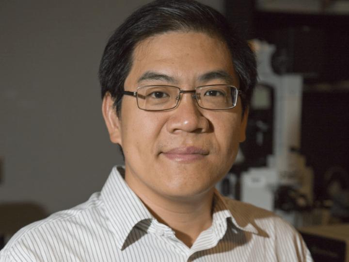 nanoparticle imaging panorama