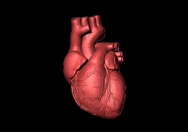 heart-1765298_640(4)